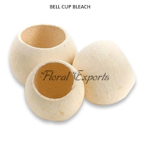 Bell Cups Mini Bleach - Bulk Potpourri Dried Flowers Supplies