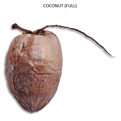 Dried Coconut whole Natural