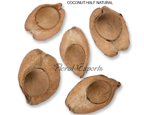 Coconut Half Natural