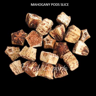 Mahogany Pods Slice Natural