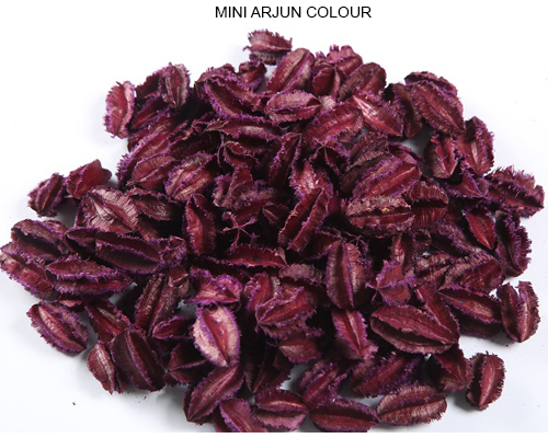Arjun Pods Mini Colour