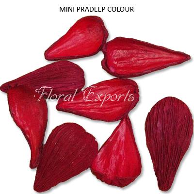 Pradeep pods Colour