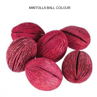 Mintolla Ball Pos Colour-Dried Pods