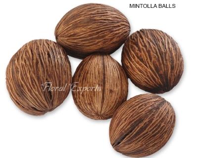 Mintolla Balls-Mintolla Seeds