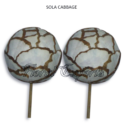Sola Cabbage Ball-Sola Decoration Balls