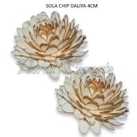 Shola Chips Dahlia 4cm Natural - Shola Fiori