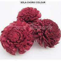 Sola Chorki 8cm Colour - Shola KWIATY