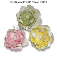 Sola New Mongolia Flowers Zig Zag Colour