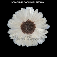 Sola Balsa Flowers-Sola Sunflowers with Titonia