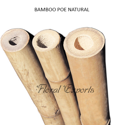 Bamboo Pole Natural - Wholesale Bamboo Pole Yard, Garden, Outdoor Living