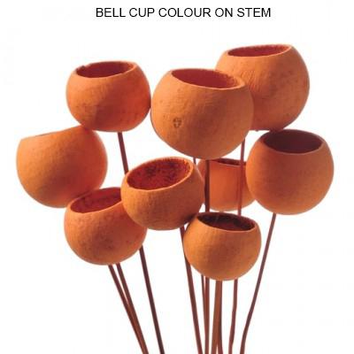Bulk Bell Cup Color on Stick Wholesale Supplies