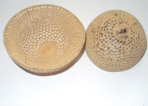 Bell Cup Net - Deco Dried Flowers Wholesale