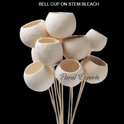 Bell Cup Bleach on Stem