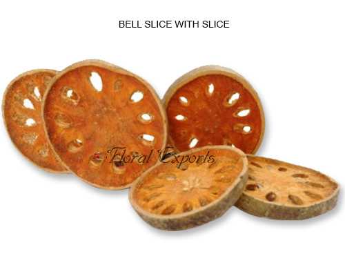 Bell Slice Special- Bulk Dried Bell Slice Wholesale