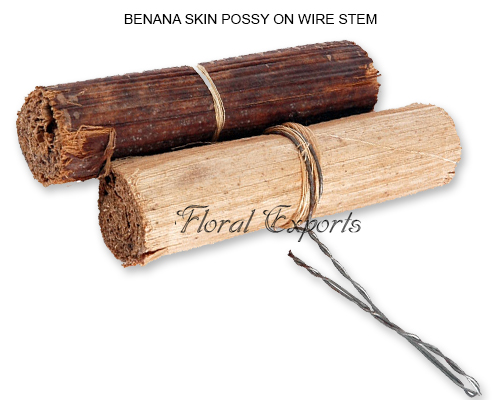 Banana Skin Possy on wire Stem