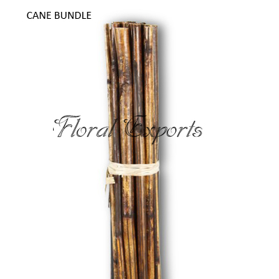 Cane Stick Bundle Long - Cane Sticks Wholesale