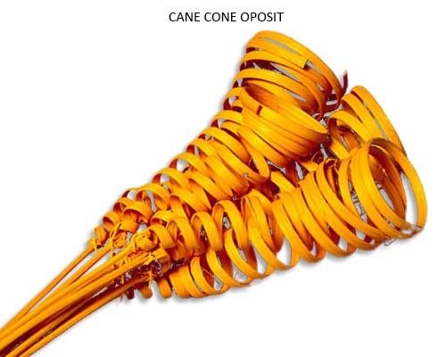 Cane Cone Oposit Orange