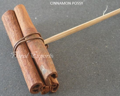 Cinnamon on Stick Possy - Wholesale Cinnamon Possy Supplies