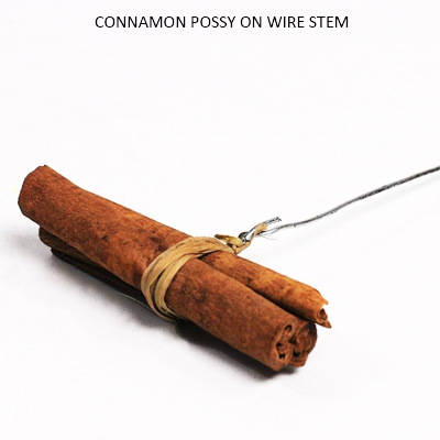 Cinnamon possy on wire stem