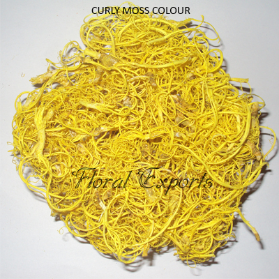 Tamarind Fibre Yellow