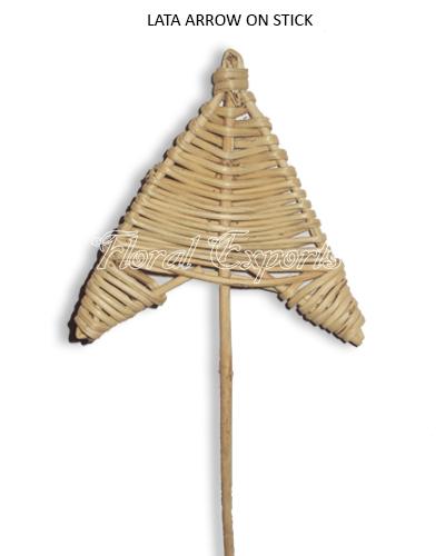 Lata Arrow on Stem - Bulk Florist Supplies
