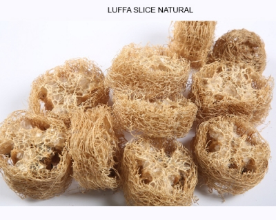 Luffa Slice Natural - Florists Christmas Decorations