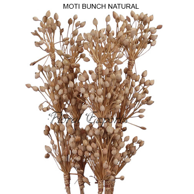 Moti Bunch Natural - Decorative Bunch Wholesale