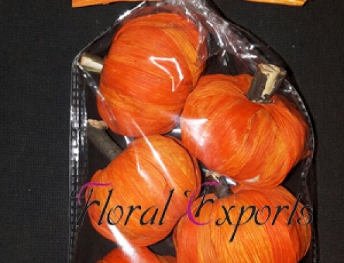Maize Pumpkin Orange 6pc Bag
