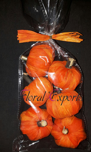 Maize Pumpkin Orange 6pc Bag - Dried Handmade Decorations
