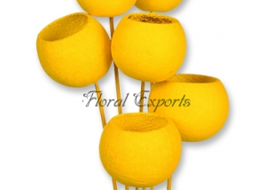 Bell Cup on Stick Yellow 6pc bunch