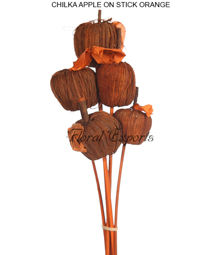 CHILKA APPLE ON STICK ORANGE 5PCS BUNCH - DRIED FRUITS