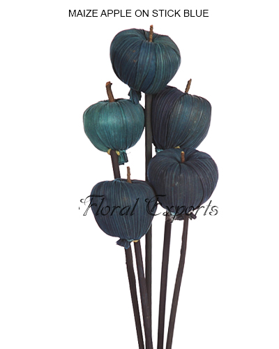 MAIZE APPLE ON STICK BLUE 5PCS BUNCH