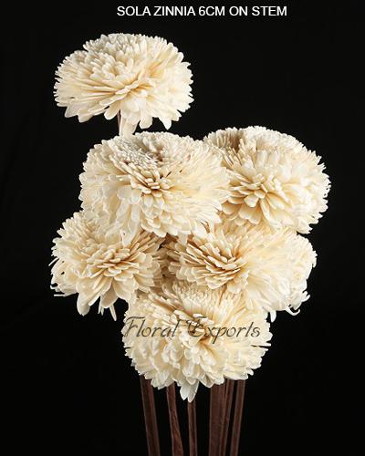 Sola Zinnia 6cm on Stick - Sola Flowers Wholesale