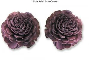 Sola Aster 6cm Wine Colour - Sola Flowers Manufacturer