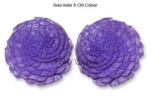 Sola Aster 8cm Colour - Sola Belli Wholesale