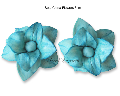 Sola China Flower 6cm Colour - Sola Flowers Wholesale