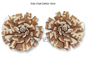 Sola Chali Dahlia 10cm - Bulk Sola Wood Flowers Supplies