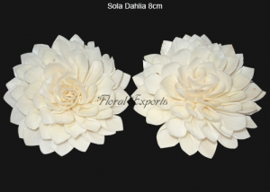 Sola Dahlia 8cm Natural - Bulk Sola wood Flowers Suppliers