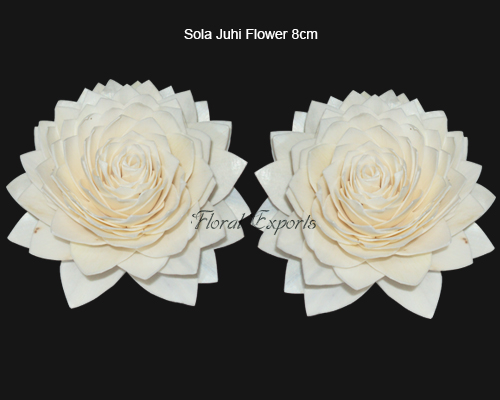 Sola Juhi Flower 8cm Natural - Bulk Sola Flowers Suppliers