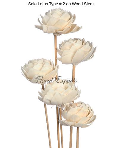 Sola Lotus Type 2 on Wood Stem - Sola Flowers Bulk Suppliers