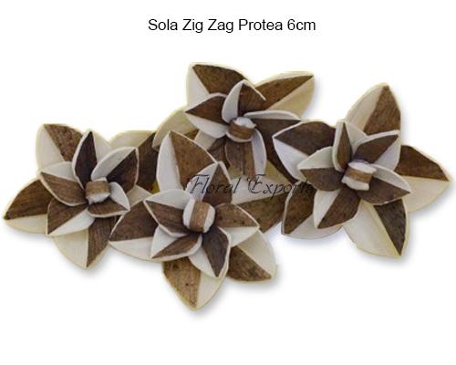 Sola Zig Zag Protea 6cm