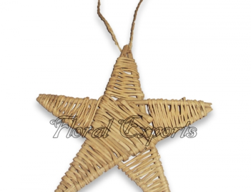 LATA STAR WITH ROPE HANGING – Macaw Rope Swing