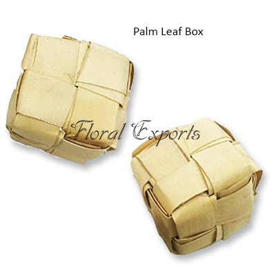 Palm Leaf Box - Bird Toy Wholesale