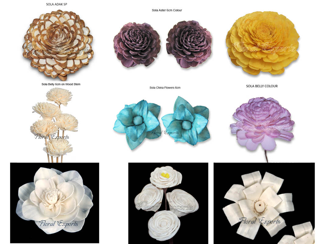 Sola flowers bulk manufacturer wholesale supplier izmirmasajfo